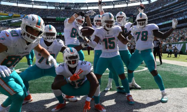 Why the Dolphins Will Make the Playoffs this Season