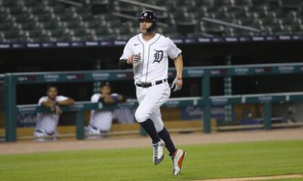 Detroit Tigers Recap #2: 15 Games In