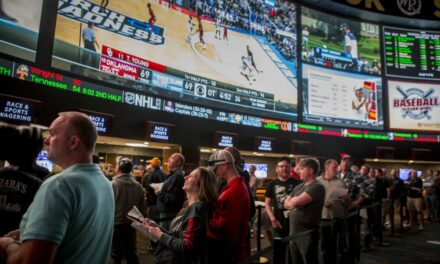 Sports Betting 101: Basics to Winning Big