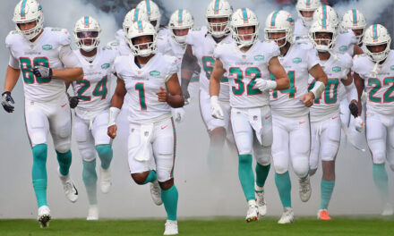 'Fins Up: The Rise of The Miami Dolphins