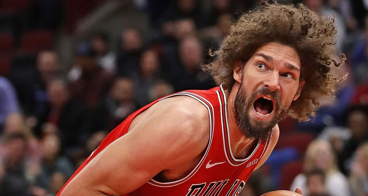 Why Robin Lopez was a Great Signing for the Washington Wizards